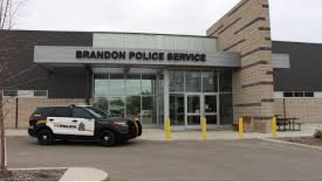 woman-assaults-79-year-old-in-brandon-113635