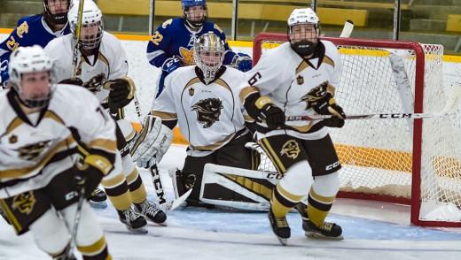 Manitoba Bison Win Quarter Final Game in Championship Series