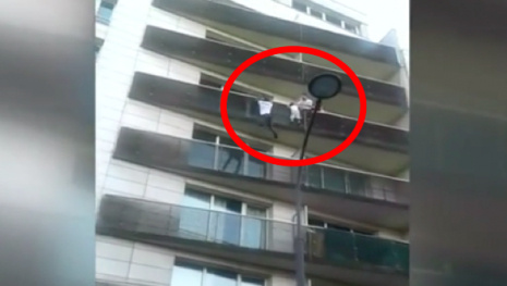 incredible-video-illegal-immigrant-rescues-boy-from-paris-balcony-114962