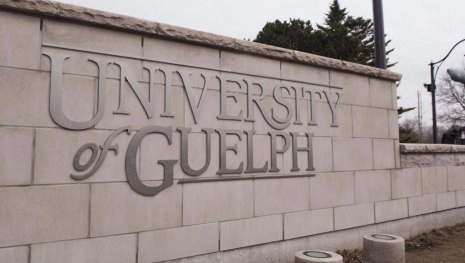 female-faculty-getting-raises-at-the-university-of-guelph-115225