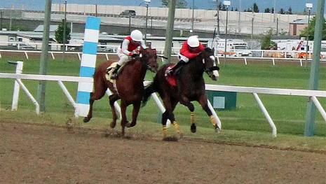big-stakes-weekend-at-the-downs-115250