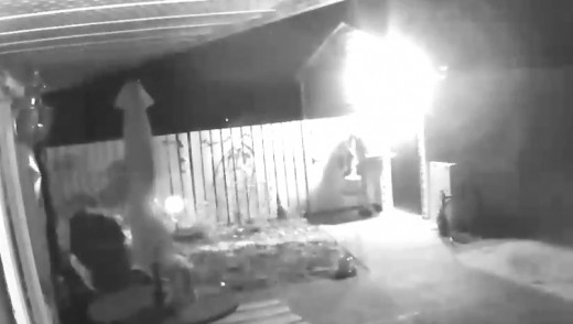 Brandon Police Looking Identify Arson Suspect in This Video