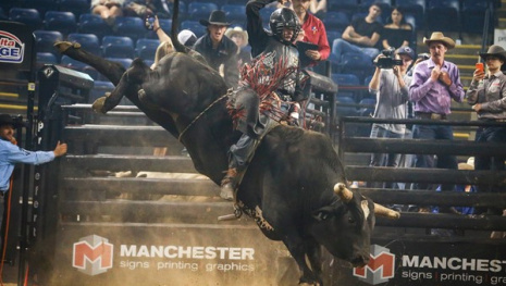 professional-bull-riders-return-to-winnipeg-115566