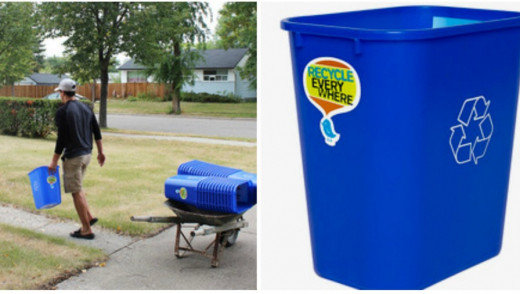 Free Recycling Bins For Brandon Residents
