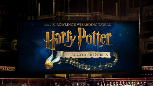 Harry Potter and The WSO Provide Magical Experience