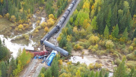 beaver-may-have-caused-train-derailment-116128
