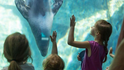 Bring the Kids to the Zoo on October 19