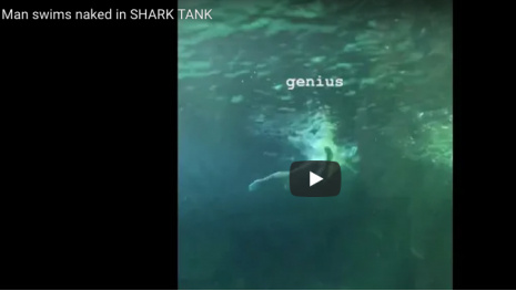 Naked Man Swims With Sharks