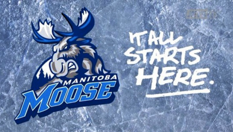 manitoba-moose-fight-cancer-game-116614