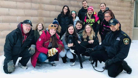 hundreds-show-up-to-keep-dogs-company-at-christmas-116929