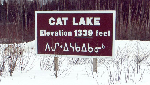 Cat Lake Leaders Warn Mould May Force Evacuation