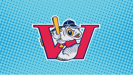 goldeyes-acquire-arm-bat-in-trade-with-airhogs-117964