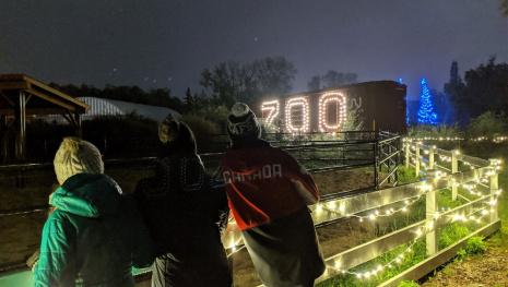 zoo-lights-festival-starts-november-30-118119
