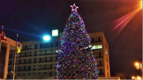 city-needs-large-spruce-tree-for-christmas-display-118122