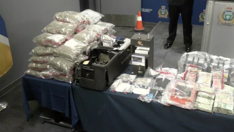9-month-investigation-leads-to-massive-drug-bust-118384
