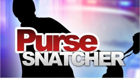 Winnipeg Purse Snatcher Busted