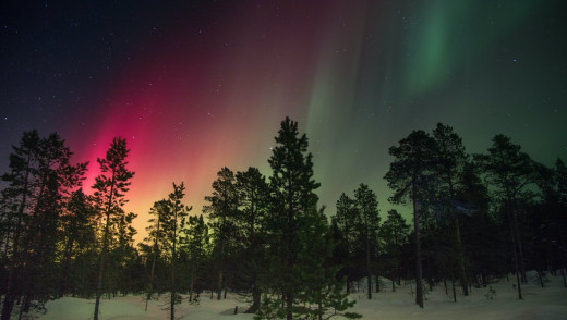 Good Year For Northern Lights