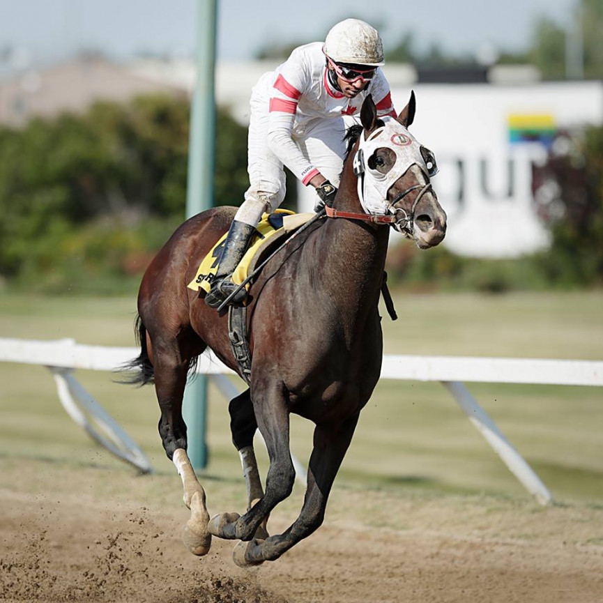 Sky Promise Wins 70th Running of the Manitoba Derby